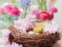 ♡<>Easter<>♡<>Spring<>♡