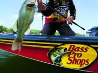 Fishing, lures, tips, great outdoors, and more.