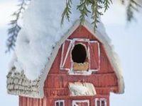 For the Birds...bird houses, baths, and feeders