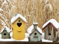 Birdhouses and birdbaths....love my feathered friends!
