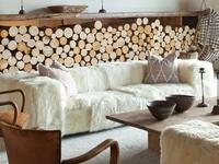 INTERIORS /Furniture and Accessories