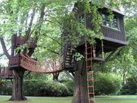 Tree Homes..