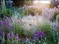 Gardens of Piet Oudolf