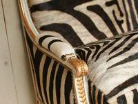 Zebra decor