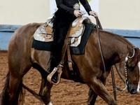 Horsemanship Patterns & Tips
