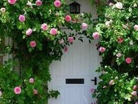 Verdant Gardens from around the World.