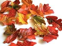 Fall stuffs