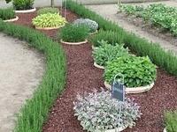 Outdoors house/garden