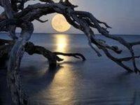 Moons, Stars, & The Night Sky