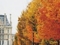 Fall♥
