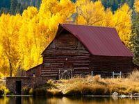 Autumn-The Season