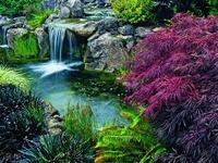 Garden Fountains &  Water Features