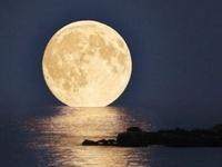 """""""M-O-O-N spells moon.."""""""
