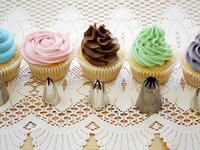 Fancy Cakes -  Cake Decorating How-to