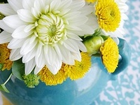 Such Pretty Flowers!