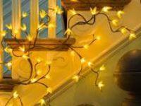 Lights, Lights, Lights!!!