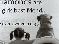 (dogs &animals &such)