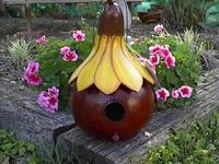 Crafts Gourds