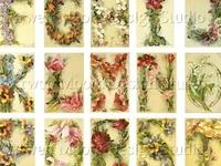 Artist Catherine Klein postcards