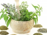 My new love ~   my herbs  ~  and how to make life easier with them...