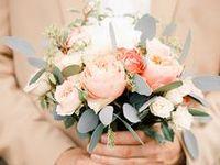 :: Peach Weddings ::