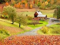 Fall & Thanksgiving inspiration