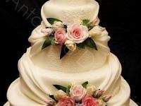 Cake & Cupcake Ideas