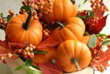 Fall / by Shabby Brocante