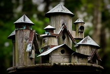 Bird Houses & Cages / Enjoy! / by Karen Heverley