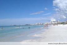Our Spot on Siesta Key / Siesta Key: #1 beach in the country. / by Tropical Beach Resorts Siesta Key