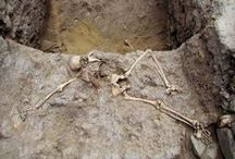 Archaeology (Anthropology) / by Joseph Wilson