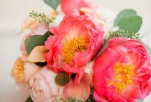 Flowers and centerpieces / by Alejandra Gutierrez