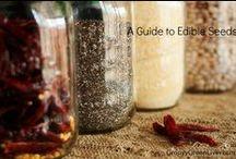 Kitchen Tips / by VeggieConverter