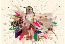 Diseño* / by Natalia Herrera