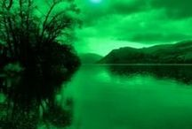 Green / by R. Healey