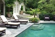 gardens | pools | plants / by Ilona Tar