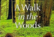 Books Worth Reading / Anything by Bill Bryson.