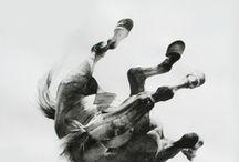 art i like / by Shona Mier