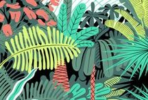 Illustration / by The Australian Graphic Supply Co