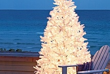 Winter Holidays - Christmas at the Beach House / Our favorite tropical winter holiday ideas including Christmas - Sirenia Style! For vacation rental accommodations on Anna Maria Island, Florida contact us: www.annamariaislandhomerental.com / by Anna Maria Island Home Rental