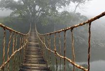 bridges to cross... / by stellarorbit ❀