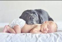 Post Baby / by Miranda McClure