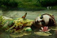 Fairy theme / by Fada Moranga
