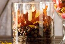 Autumn / by Maren Holzinger