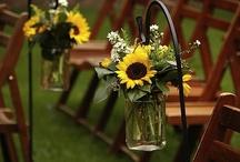 Sunflowers! <3 / by Aimee Speel