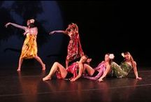 Dance at Manhattanville / The Dance Department host their Fall and Spring Dance Concert every semester. Senior's are required to choreograph and create their own pieces as part of their graduation requirement / by Manhattanville College