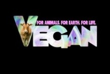 All Things Vegan / Anything you can make.....I can make vegan! / by Diane Gray