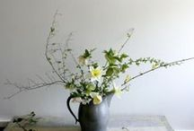 florals / by Ginny Branch Stelling
