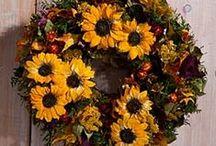 Smiling Sunflowers / by Uno Alla Volta