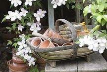 Garden ideas / by Patricia Davis
